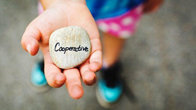 cooperative stone