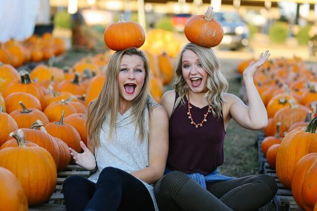 かぼちゃが売れちゃったガールの画像