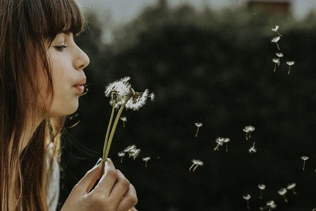 綿毛を吹く女性の画像