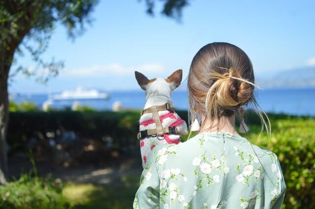 犬と女性と美しい景色の画像