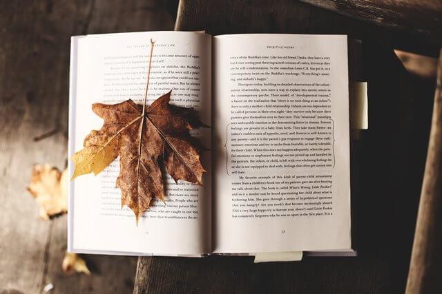 読書用の本と栞としての落ち葉